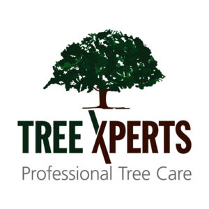 Tree Xperts | Professional Tree Care